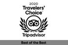 Travelers Choice 2020 logo